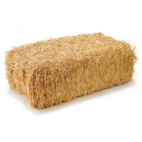 Продам солому в тюках пшеничная