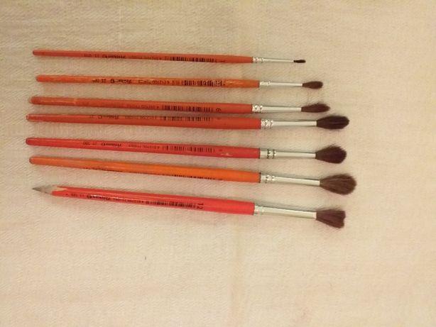 Set pensule pt pictura din par natural