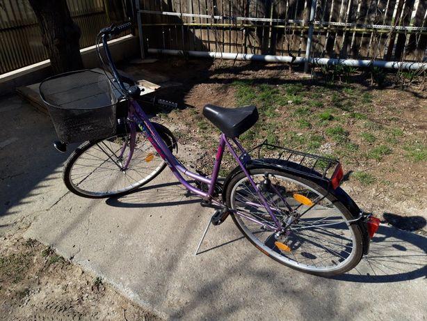 Bicicleta Ragaz Generation