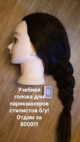 Манекен с очень длинными волосами
