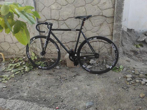 Bear bike  Fixed gear