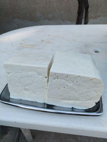 Brânză telemea  din lapte de oaie