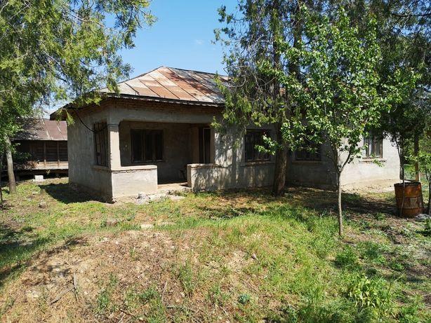 casa si teren iesire la bratul Borcea, com Oltina jud Calarasi