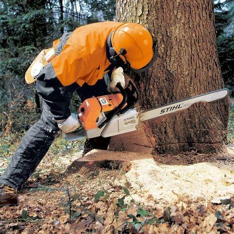 Спил, снос и санитарная обрезка деревьев в Алматы