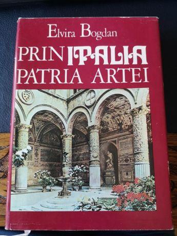 Elvira Bogdan - Prin Italia Patria Artei