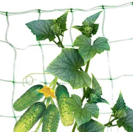 Сетка шпалерная, сетка для вьющихся растений, сетка для винограда.
