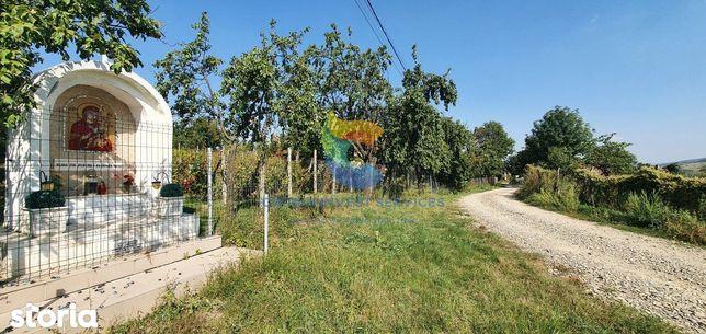 Teren de vanzare Goruni, Tomesti, loc de casa, utilitati, zona in dezv