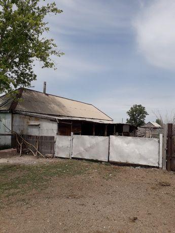 Дом в совхозе Коктас