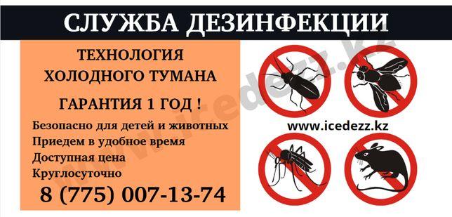 Уничтожение блох,клопов,тараканов,муравьев,крыс,клещей! ДЕЗИНФЕКЦИЯ