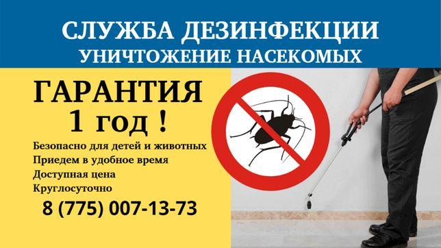 ДЕЗИНСЕКЦИЯ уничтожение блох,клопов,тараканов,муравьев,крыс,клещей,ос!