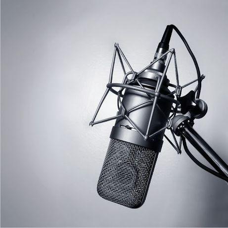 Озвучка аудио и видео роликов. Диктор