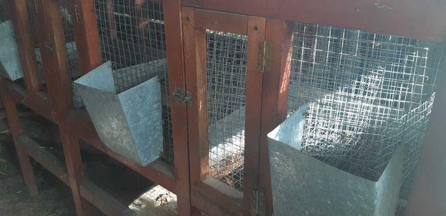 Cusca pentru iepuri cu facilitati de intretinere