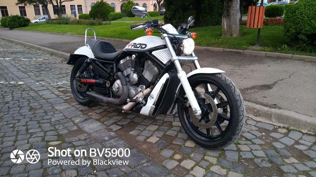 Harley Davidson V-rod 1200/2004