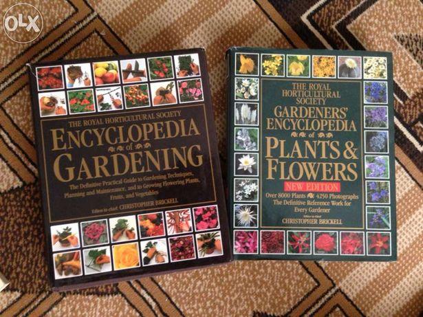 Enciclopedii in engleza