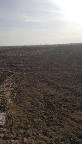 Arendez teren agricol