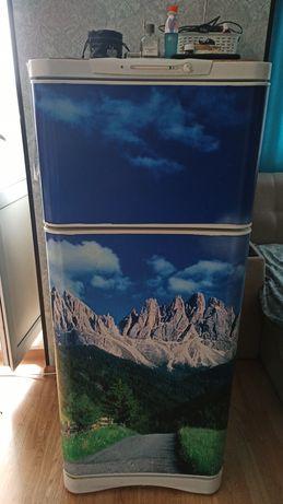 Холодильник на Лесной поляне