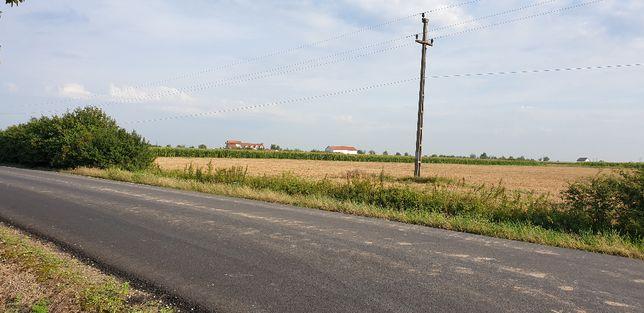 Teren intravilan 5600 mp Gepiu-Oradea la 18 KM