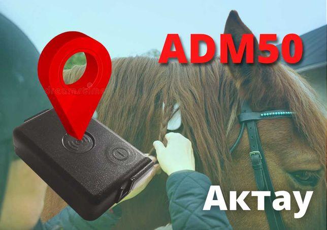 GPS трекер ADM50 Для лошадей, коров и верблюдов в Актауе