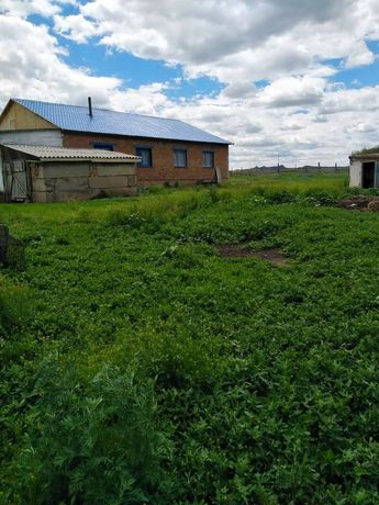 Продаю дом, крестьянское хозяйство, ранчо