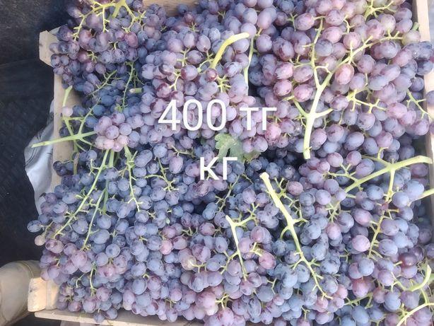 Виноград киш-миш доставка бар