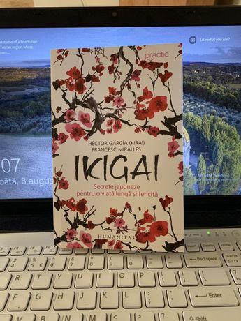 Carte IKIGAI Hector Garcia