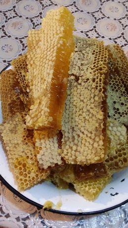 Vand fagure cu miere