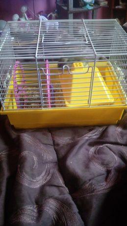 Vind cusca hamsteri