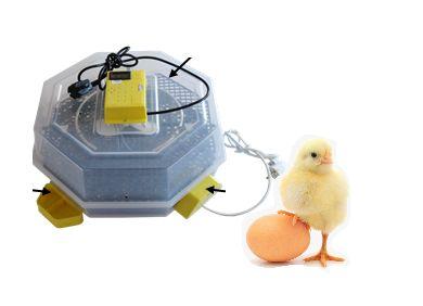 Автоматичен инкубатор