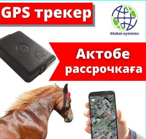 GPS трекер Neomatica ADM50 для лошадей и КРС в Алматы