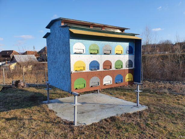 Vand Pavilion Apicol cu 30 Cutii Orizontale