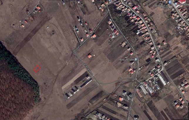 Persoană fizică vând teren în Chinteni (zonă în plină dezvoltare) 22€