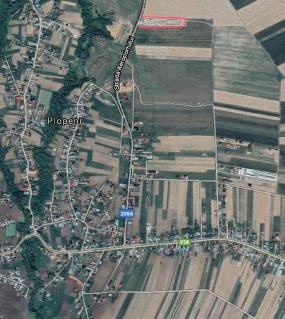 Teren extravilan de vanzare pe strada Aeroportului , Orasul Salcea