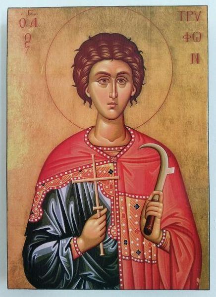 Икона на Свети Трифон icona Sveti Trifon гр. Пловдив - image 1