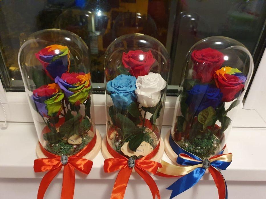 Trandafir criogenat ideal pt cadou Bucuresti - imagine 1