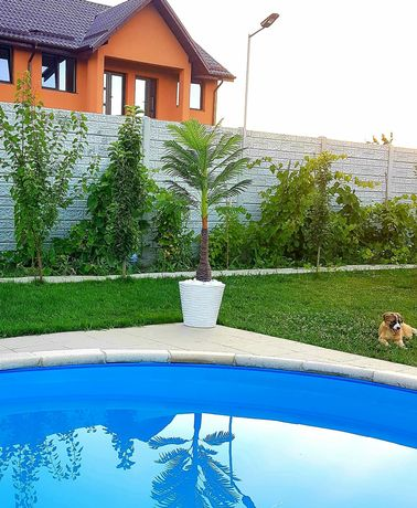 Plante verzi artificiale,exotice,palmier,orhidee,trandafiri