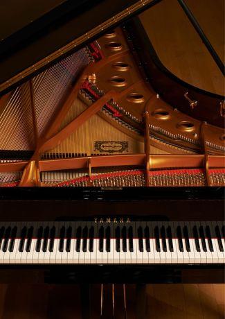 Преподаю фортепиано на дому
