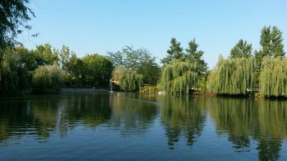 Багетист предлага откриване на вода за кладенци и сондажи
