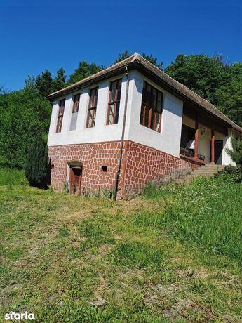 Seini, zona Boci, vind casa plus teren 1hectar, 47000euro