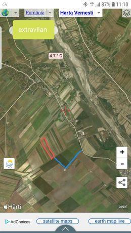 Vand teren 5000+5500 extravilan Vernesti Buzău