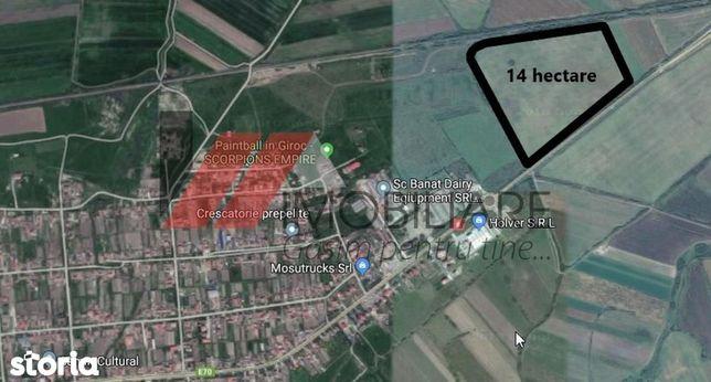 Remetea Mare Teren arabil in Intravilan 14 ha