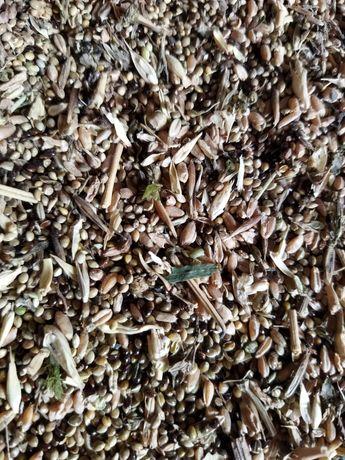 Продам зерно отходы