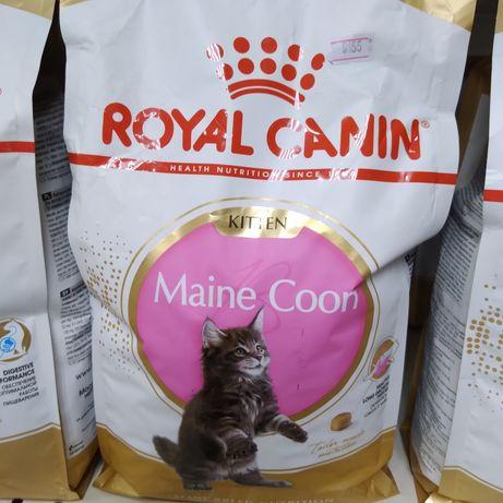 Сухой корм для котят мейн-кунов Роял Канин, Royal Canin Maine Coon