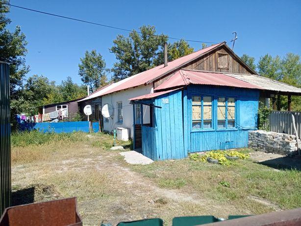 Продам дом  Курчум