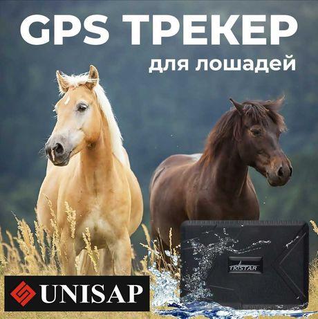 GPS трекер на магните для автомобиля/Лошадей/ДОСТАВКА АТЫРАУ!
