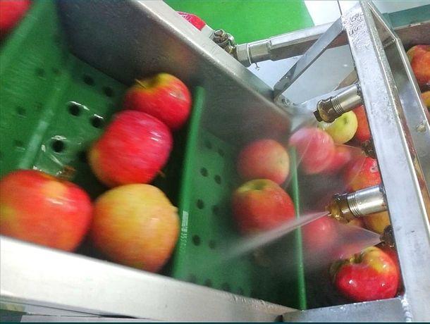 Vii cu mere, pleci cu suc. Suc de mere!!