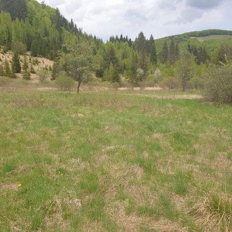 Vand teren pentru cabana/pensiune in Sucevita