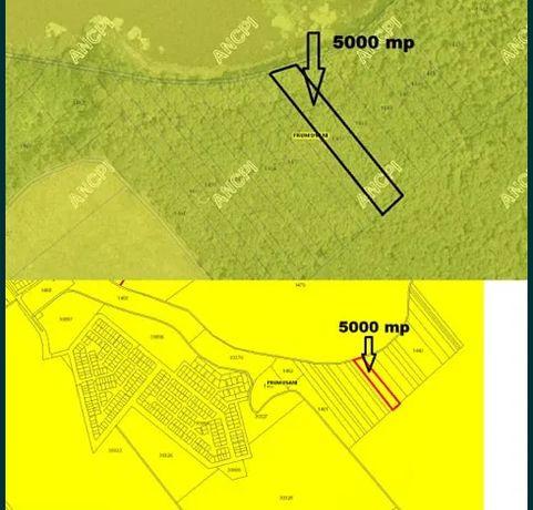 Padure teren forestier-5000mp Balta Tararu/ Frumusani Residential Park