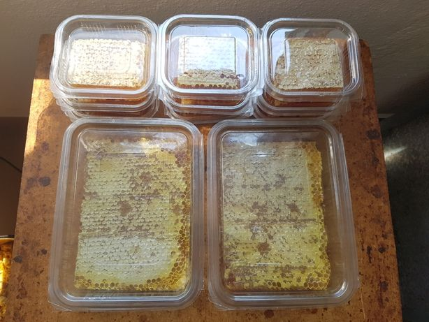 Fagure de albine cu miere 2019