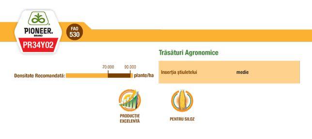 Seminte/samanta porumb PR34Y02(siloz)