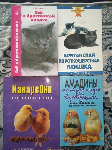 Книги про британских кошек и птиц